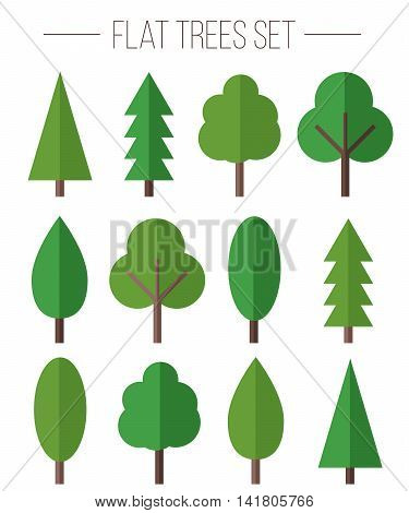 Vector set of different trees in flat style