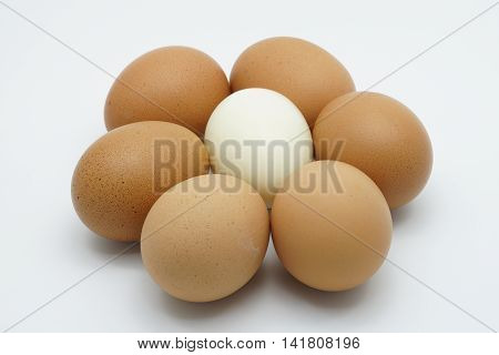 A Boiled Egg In The Middle Six Chicken Eggs