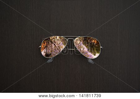 Sunglasses on the wood, sky and trees is reflected in the glasses