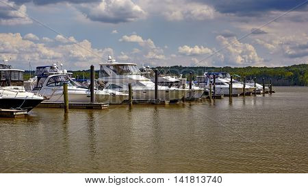 Boats docked in a marina on the river