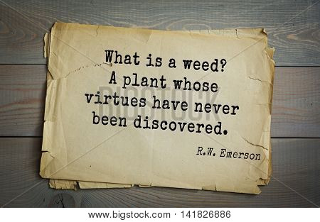 Aphorism Ralph Waldo Emerson (1803-1882) - American essayist, poet, philosopher, social activist quote. What is a weed? A plant whose virtues have never been discovered.