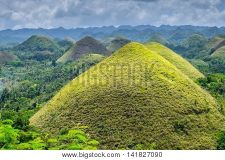 famous natural landmark Chocolate Hills in Bohol island Philippines