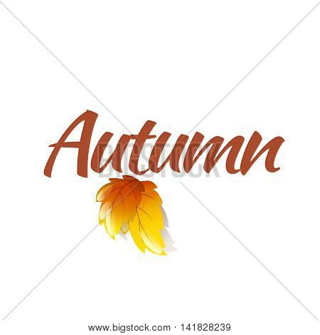 Autumn Logo Template