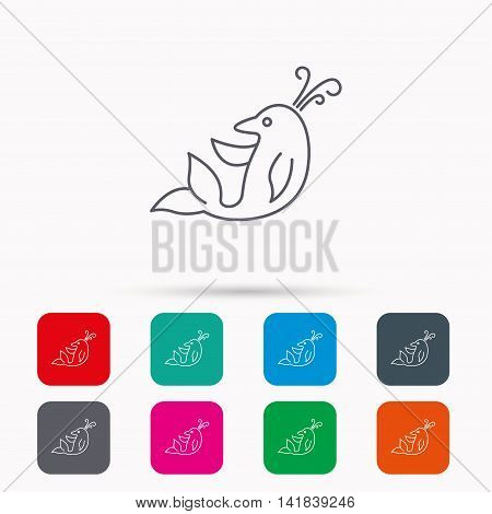 Dolphin icon. Cetacean mammal sign. Delphinidae with fountain symbol. Linear icons in squares on white background. Flat web symbols. Vector