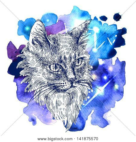 Vector hand drawn illustration head of cat. Boho style poster. Ink sketch drawing of animal.