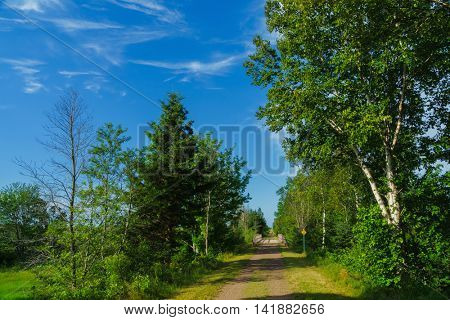 The walking and biking trail, the Confederation Trail (part of the Trans Canada Trail), that runs the length of Prince Edward Island.