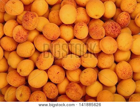 Fresh ripe mellow apricots background pattern close up top view