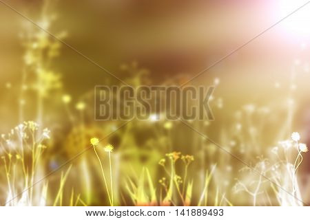 Autumn background. Flowers and plants background. Sunny day background. Defocused background. Fall beauty. Fall landscape. Field of flowers. Green yellow brown fall colors.