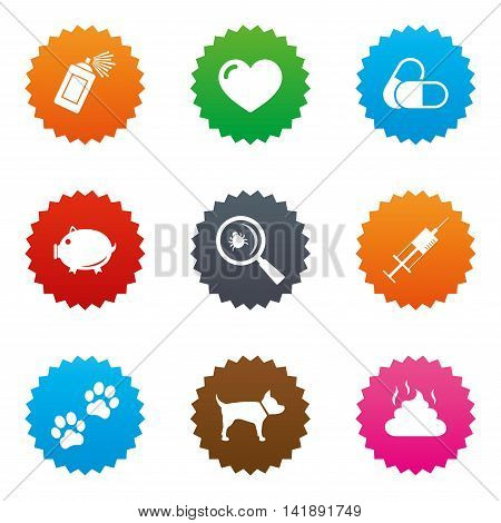 Veterinary, pets icons. Dog paws, syringe and magnifier signs. Pills, heart and feces symbols. Stars label button with flat icons. Vector