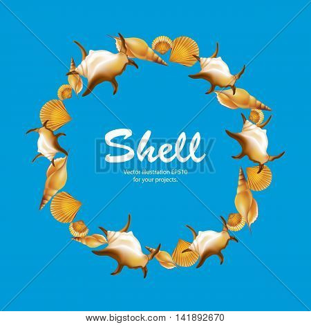 Shells round frame on blue background. Vector illustration.