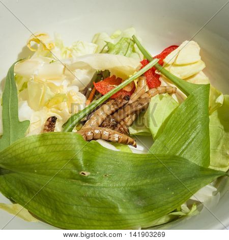 Fried Insects And Worms On A Plate With Fresh Vegetables For Gourmets