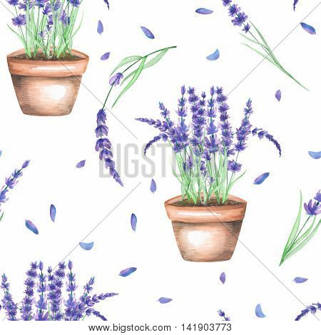 A seamless pattern with the lavender flowers in a pot, isolated hand drawn in a watercolor on a white background