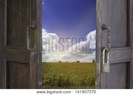old wood window open to corn farm and blue sky cloudy - can use to display or montage on products
