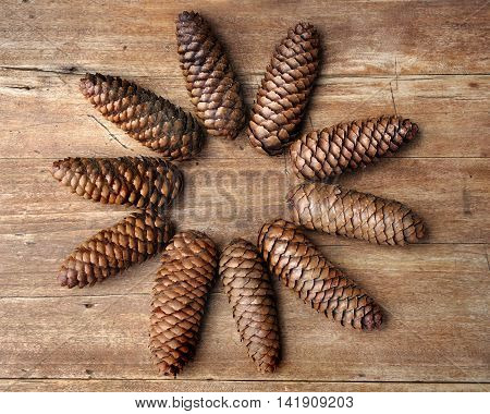 pine cones flower shape on wooden background