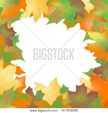 frame of maple leaves on a white background