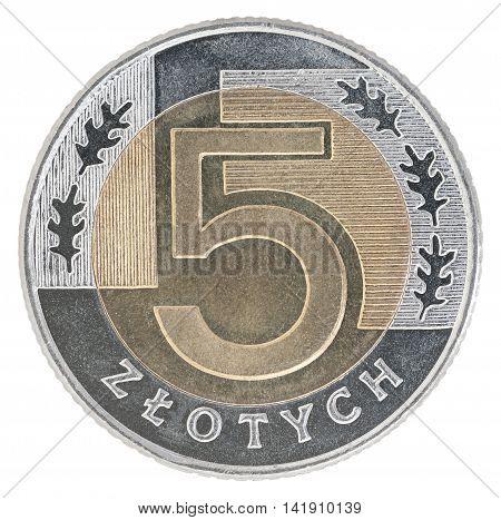 New Polish Zloty Coin