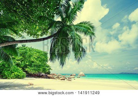 tropical Seychelles beach