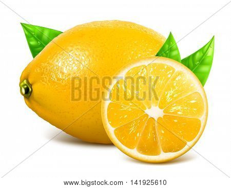 Fresh lemons with leaves. Vector illustration. Fully editable handmade mesh.