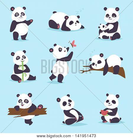 Panda cartoon character in various expression. Animal white cute china black panda bear giant mammal fat wilderness rare. Lying woods panda bear eating bamboo china wild animals vector character.