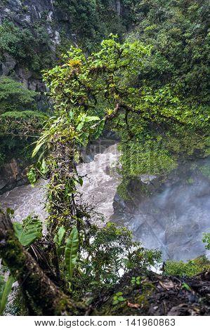 Jungle Mountain river the part of waterfall Pailon del Diablo in the Andes. Banos. Ecuador
