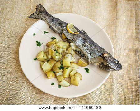 Tasty grilled trout with potatoes and lemon on the round plate. Food theme. International cuisine.