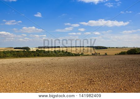 Scenic Agricultural Land