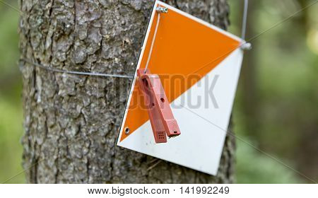 An Orienteering Control Point on tree stem.