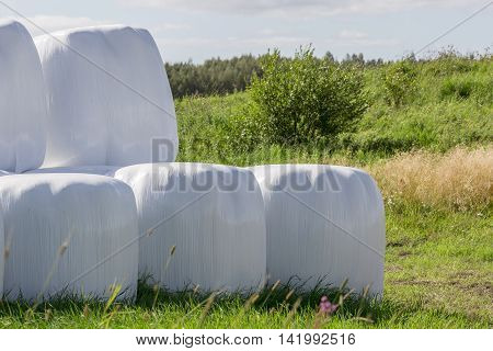 Silage Balls Close Up with vegetation in the background.