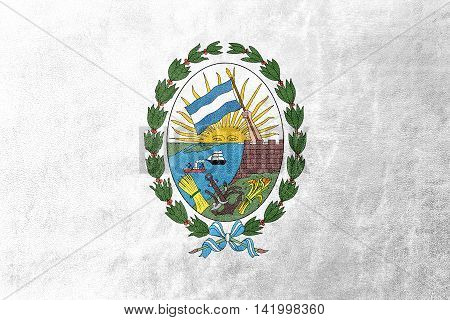Flag Of Rosario, Santa Fe, Argentina, Painted On Leather Texture
