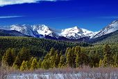 Winter Mountains And Forest In Colorado with blue sky and snow captured in Rocky Mountain National Park poster