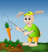 Rabbit with a fishing tackle catches a carrot from a bed poster