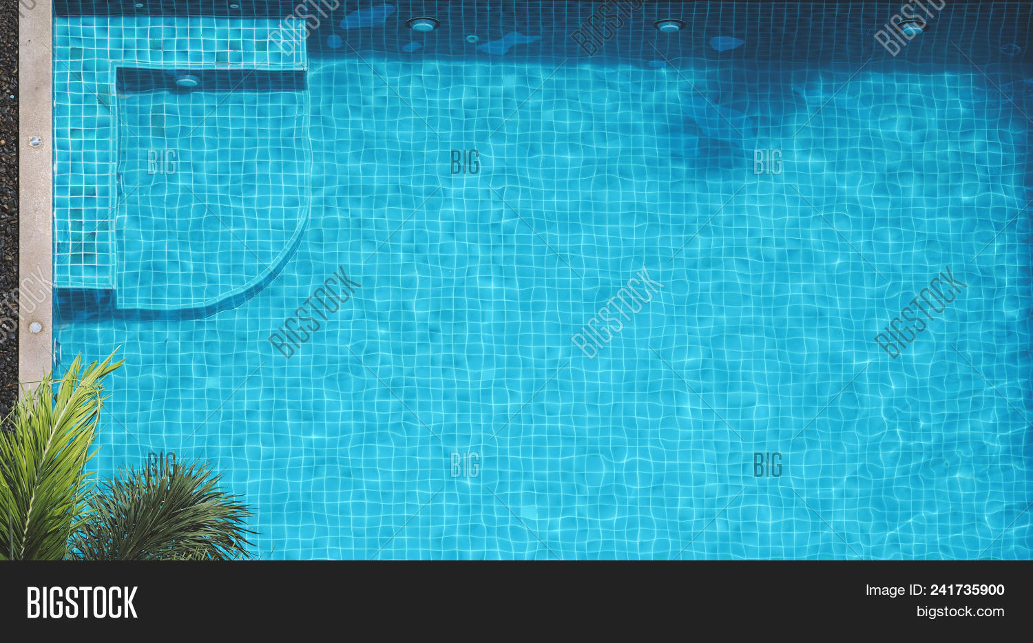 Swimming Pool Bubble Image & Photo (Free Trial) | Bigstock