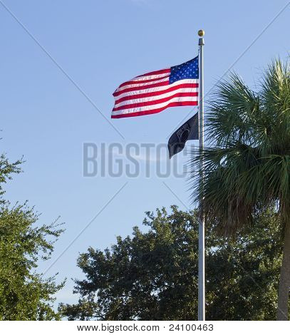 Old Glory Against A Blue Sky