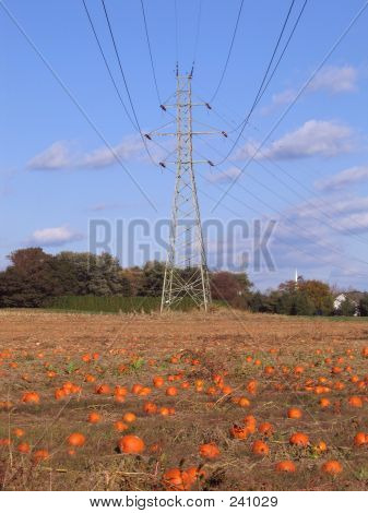Power And The Pumpkins