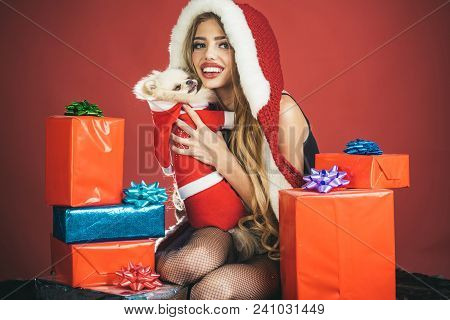 Santa Girl. Santa Dog. Pretty Girl In Santa Hat With Puppy And Many Gifts. Winter Holiday, Dog Year.