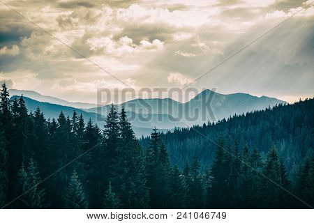 Inspiring Dramatic Mountains Landscape Panorama, Beautiful Day In Summer Tatras, Flowers And Mountai
