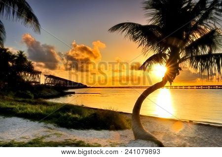 Palm Tree Leaning Over The Ocean At Sunrise, Bahia Honda State Park, Florida Keys