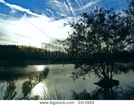 Blue Sky Dark Trees Lagoon