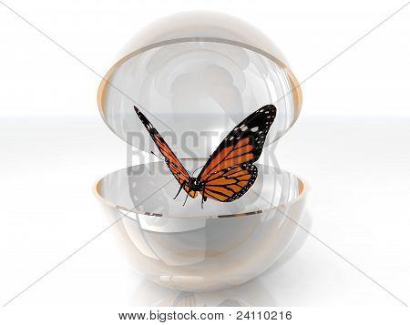 butterfly in a bubble