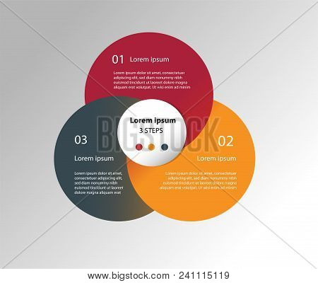 Circle Design Elements For Business Multicolor Infographics. Vector Template With 3 Steps