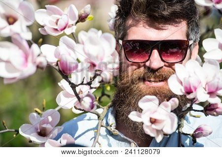 Man With Beard And Mustache Wears Sunglasses On Sunny Day, Magnolia Flowers On Background. Guy Looks