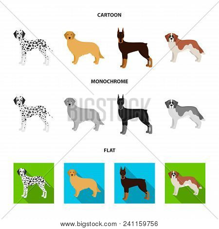 Dog Breeds Cartoon, Flat, Monochrome Icons In Set Collection For Design.dog Pet Vector Symbol Stock