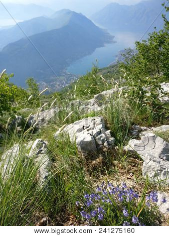 View Of Kotor Bay From The Heights. Mount Lovcen To The Bay. Mountains And Bay In Montenegro. Lovcen