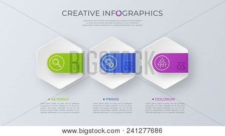 Contemporary Minimalist Vector Infographic Design With Three Options. Global Swatches.