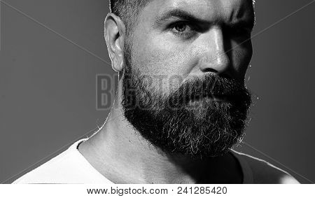 Solid Man With Beard And Mustache. Closeup Portrait Of Athletic Bearded Man. Handsome Stylish Bearde