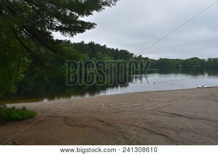 Beautiful Natural Forest And Pond In New England