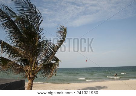 Thailand Island Beautiful Resort View With Palm N Freground