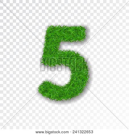 Grass Number Five. Green Number Five, Isolated On White Transparent Background. Green Grass 5, Fresh