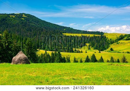 Mountainous Rural Area On A Bright Summer Day. Rolling Hills With Haystacks And Spruce Forest. Mount