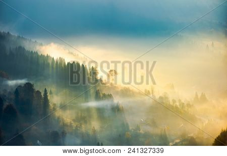 Trees In Glowing Morning Fog. Gorgeous Nature Background. Amazing Autumnal Atmosphere In Carpathian